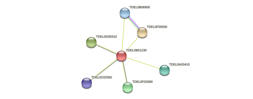 XP_003679463.1 protein (Torulaspora delbrueckii) - STRING interaction network