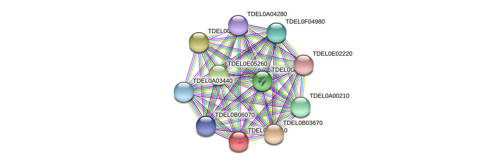SGF11 protein (Torulaspora delbrueckii) - STRING interaction network