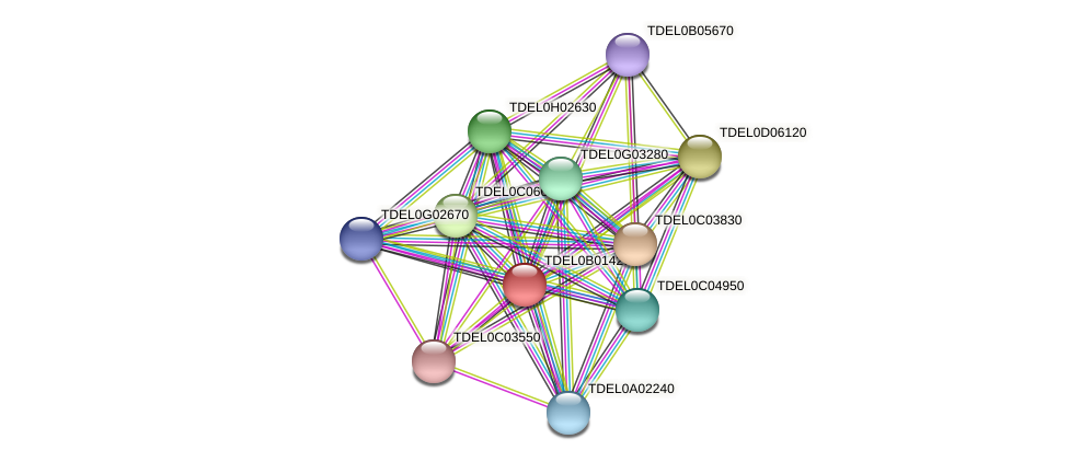 XP_003679482.1 protein (Torulaspora delbrueckii) - STRING interaction network