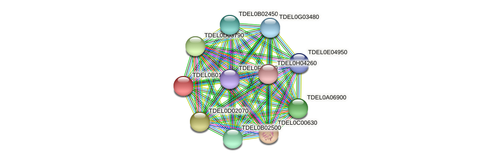 XP_003679502.1 protein (Torulaspora delbrueckii) - STRING interaction network