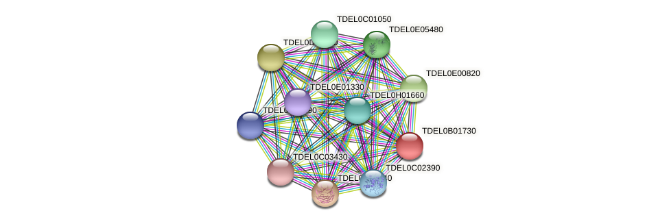 XP_003679513.1 protein (Torulaspora delbrueckii) - STRING interaction network