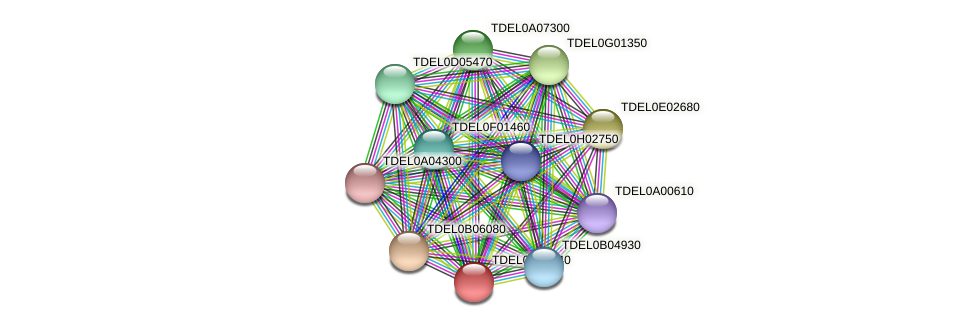 XP_003679514.1 protein (Torulaspora delbrueckii) - STRING interaction network