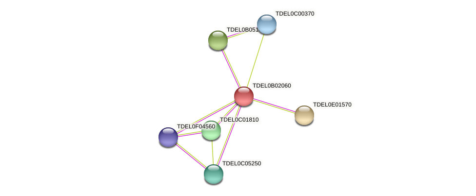 XP_003679546.1 protein (Torulaspora delbrueckii) - STRING interaction network
