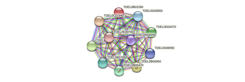 XP_003679568.1 protein (Torulaspora delbrueckii) - STRING interaction network