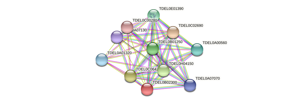 XP_003679570.1 protein (Torulaspora delbrueckii) - STRING interaction network