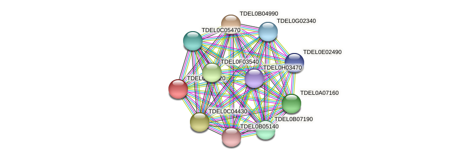 XP_003679622.1 protein (Torulaspora delbrueckii) - STRING interaction network