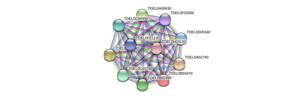 XP_003679687.1 protein (Torulaspora delbrueckii) - STRING interaction network
