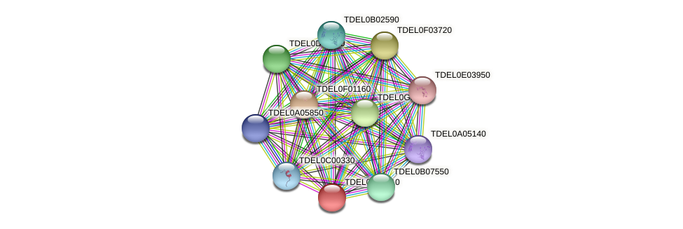 XP_003679731.1 protein (Torulaspora delbrueckii) - STRING interaction network