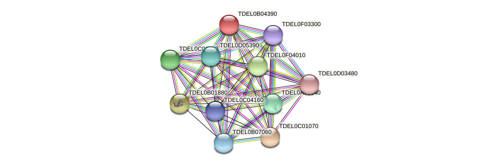 XP_003679779.1 protein (Torulaspora delbrueckii) - STRING interaction network
