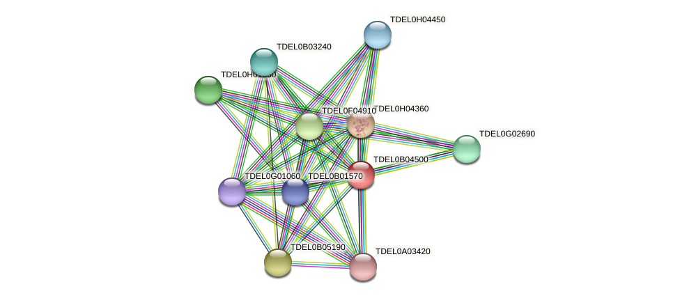 XP_003679790.1 protein (Torulaspora delbrueckii) - STRING interaction network