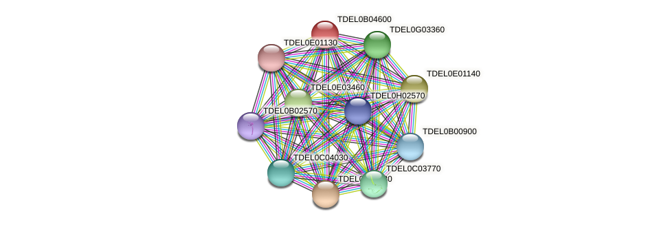 XP_003679800.1 protein (Torulaspora delbrueckii) - STRING interaction network