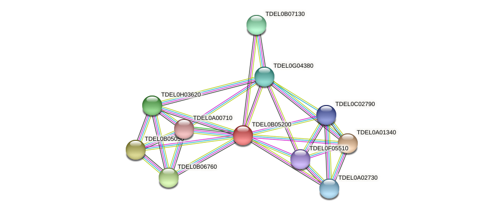 XP_003679860.1 protein (Torulaspora delbrueckii) - STRING interaction network