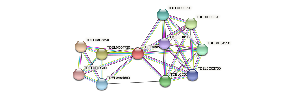 XP_003679905.1 protein (Torulaspora delbrueckii) - STRING interaction network