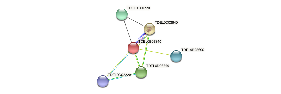 XP_003679924.1 protein (Torulaspora delbrueckii) - STRING interaction network