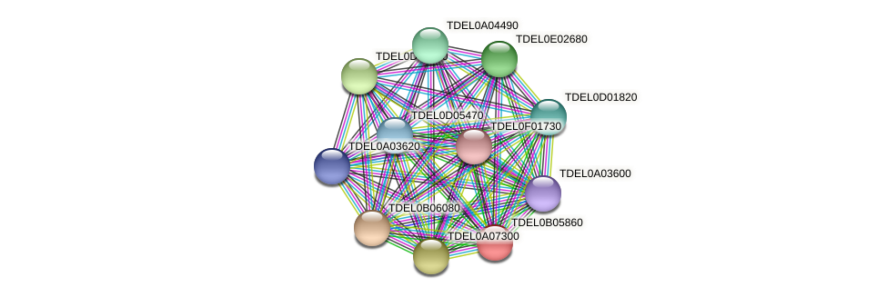 XP_003679926.1 protein (Torulaspora delbrueckii) - STRING interaction network