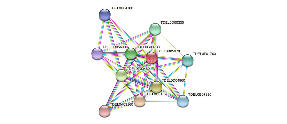 XP_003679937.1 protein (Torulaspora delbrueckii) - STRING interaction network