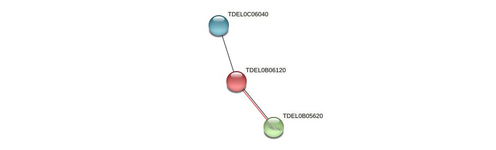 XP_003679952.1 protein (Torulaspora delbrueckii) - STRING interaction network