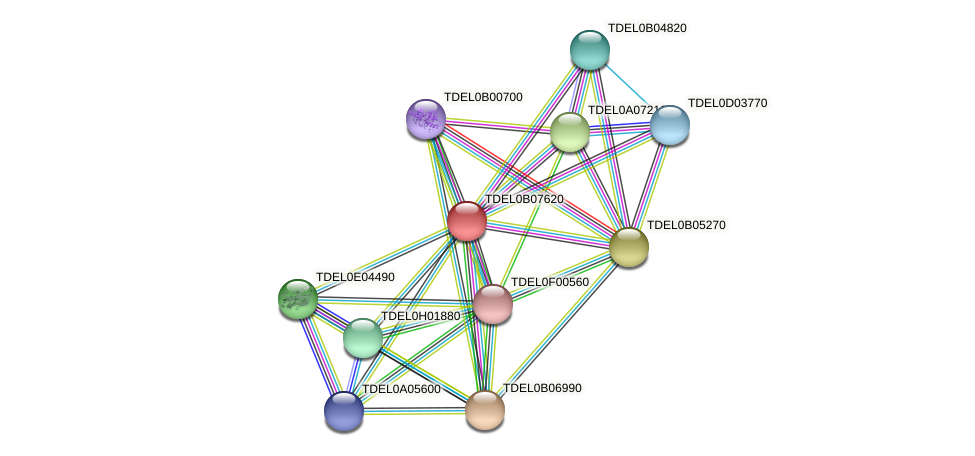 URA6 protein (Torulaspora delbrueckii) - STRING interaction network