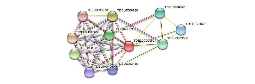 XP_003680135.1 protein (Torulaspora delbrueckii) - STRING interaction network