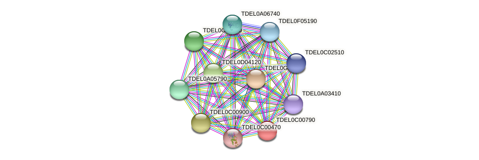 XP_003680179.1 protein (Torulaspora delbrueckii) - STRING interaction network
