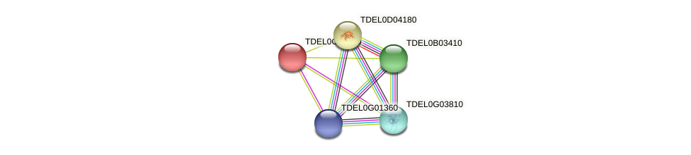 XP_003680236.1 protein (Torulaspora delbrueckii) - STRING interaction network