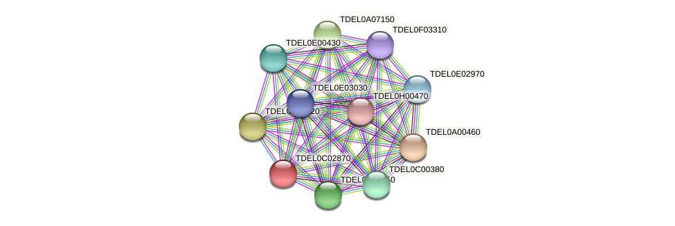 XP_003680387.1 protein (Torulaspora delbrueckii) - STRING interaction network