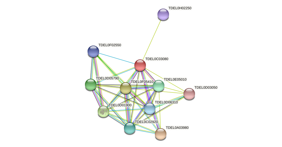 XP_003680408.1 protein (Torulaspora delbrueckii) - STRING interaction network