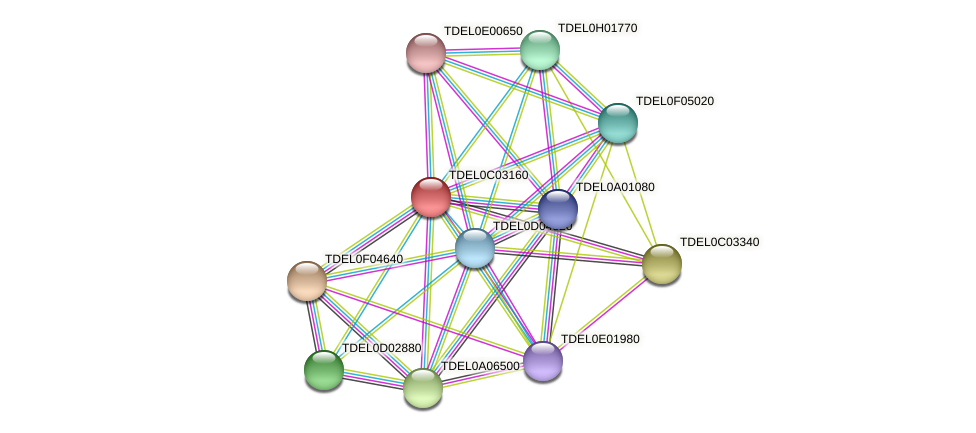 XP_003680416.1 protein (Torulaspora delbrueckii) - STRING interaction network