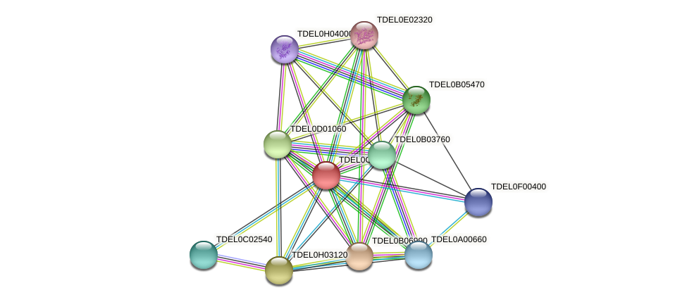 XP_003680439.1 protein (Torulaspora delbrueckii) - STRING interaction network