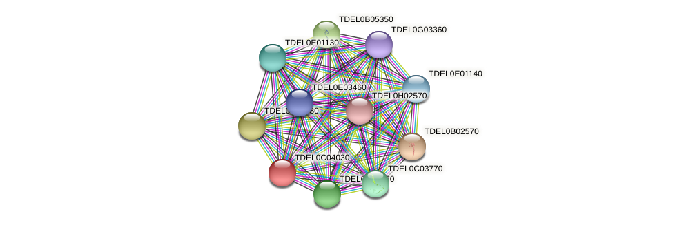 XP_003680503.1 protein (Torulaspora delbrueckii) - STRING interaction network