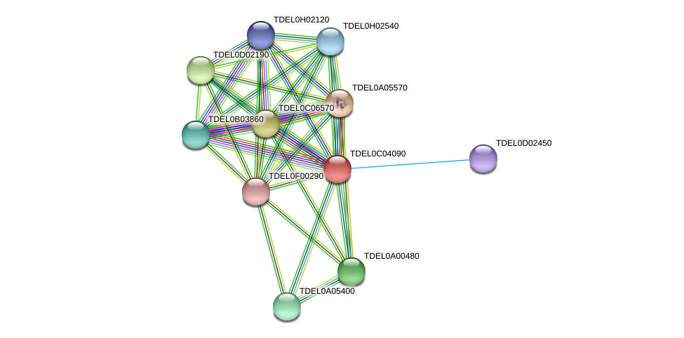 XP_003680509.1 protein (Torulaspora delbrueckii) - STRING interaction network
