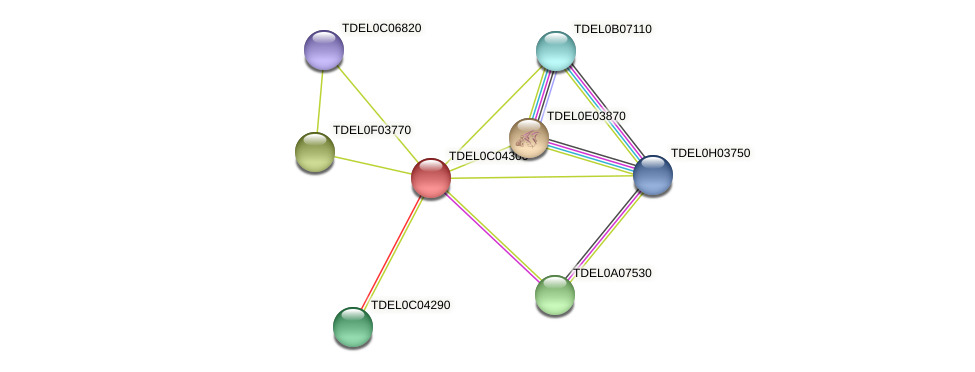 XP_003680530.1 protein (Torulaspora delbrueckii) - STRING interaction network