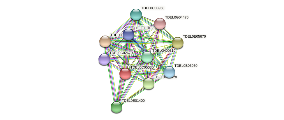 XP_003680603.1 protein (Torulaspora delbrueckii) - STRING interaction network