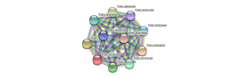 XP_003680626.1 protein (Torulaspora delbrueckii) - STRING interaction network
