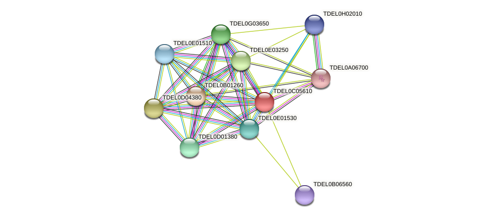 XP_003680661.1 protein (Torulaspora delbrueckii) - STRING interaction network