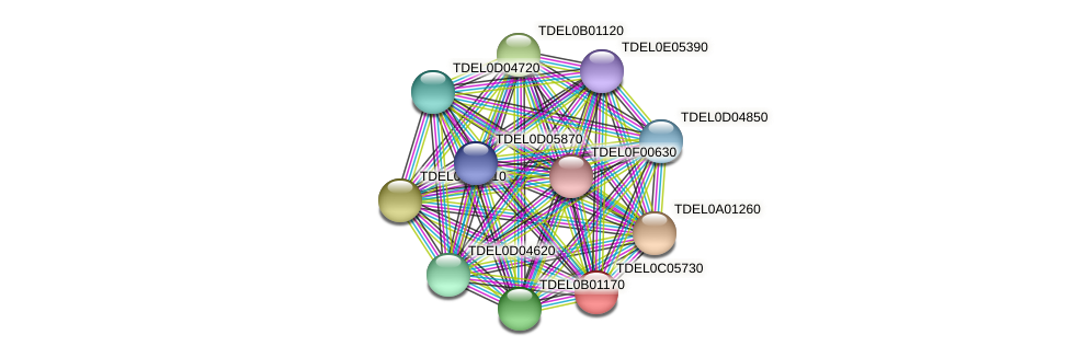 XP_003680673.1 protein (Torulaspora delbrueckii) - STRING interaction network
