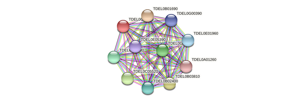 XP_003680685.1 protein (Torulaspora delbrueckii) - STRING interaction network