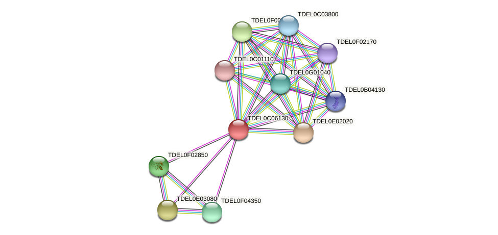 XP_003680713.1 protein (Torulaspora delbrueckii) - STRING interaction network