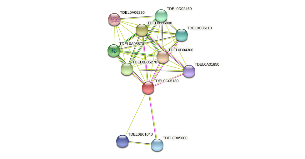 XP_003680718.1 protein (Torulaspora delbrueckii) - STRING interaction network