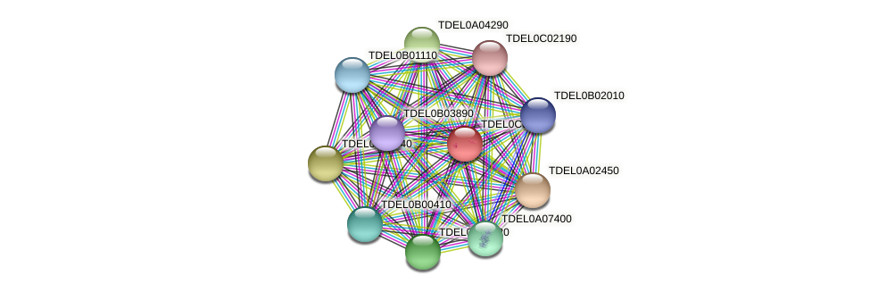 XP_003680738.1 protein (Torulaspora delbrueckii) - STRING interaction network