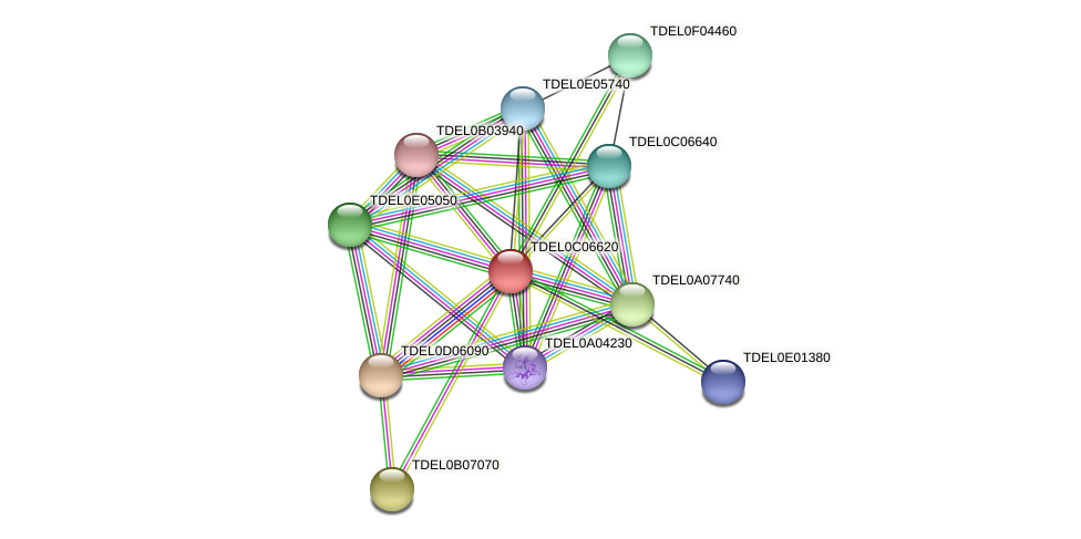 XP_003680762.1 protein (Torulaspora delbrueckii) - STRING interaction network