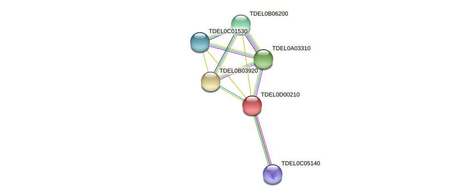 XP_003680816.1 protein (Torulaspora delbrueckii) - STRING interaction network