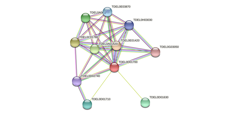 XP_003680965.1 protein (Torulaspora delbrueckii) - STRING interaction network