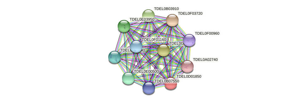 XP_003680980.1 protein (Torulaspora delbrueckii) - STRING interaction network