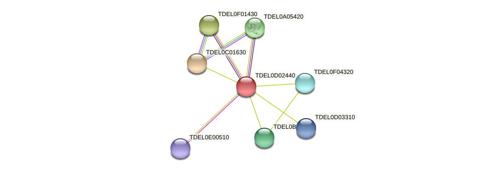 XP_003681039.1 protein (Torulaspora delbrueckii) - STRING interaction network
