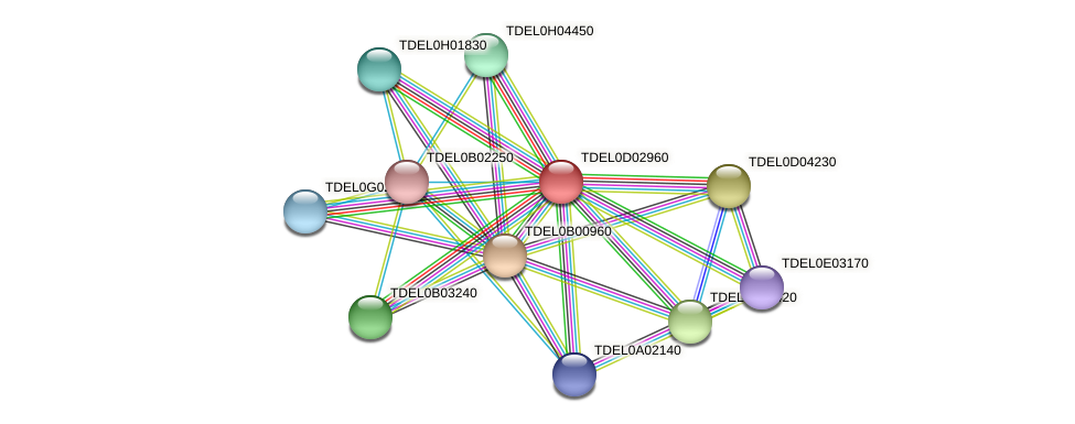 XP_003681091.1 protein (Torulaspora delbrueckii) - STRING interaction network