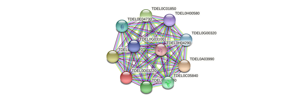 TIF32 protein (Torulaspora delbrueckii) - STRING interaction network
