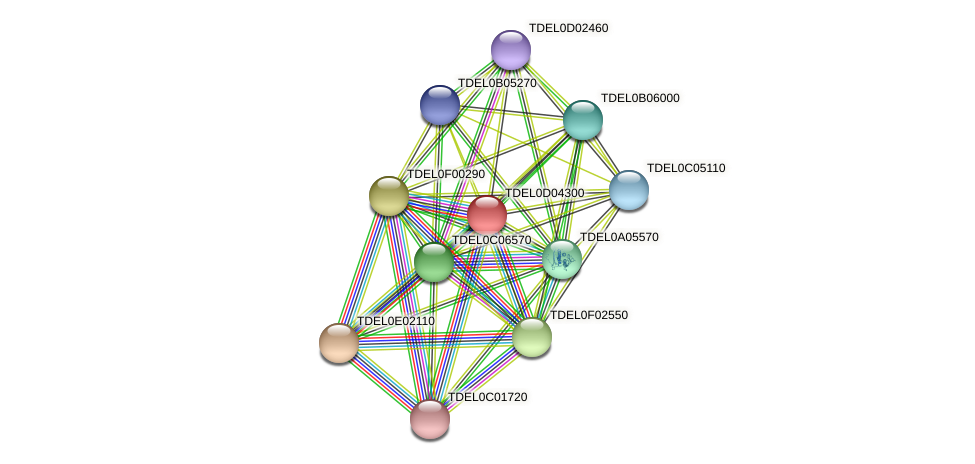 XP_003681225.1 protein (Torulaspora delbrueckii) - STRING interaction network