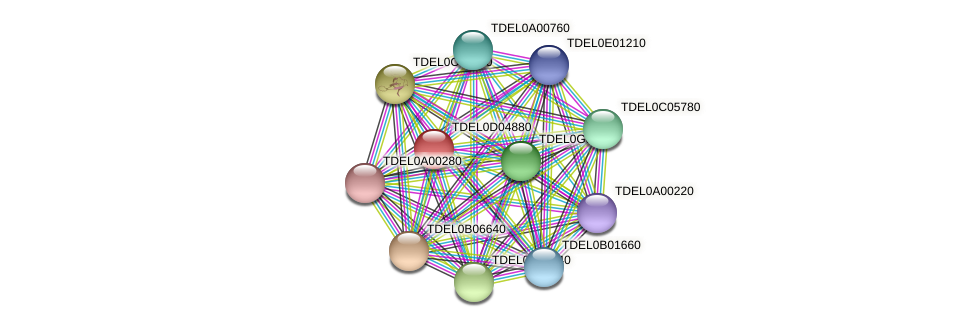 XP_003681283.1 protein (Torulaspora delbrueckii) - STRING interaction network