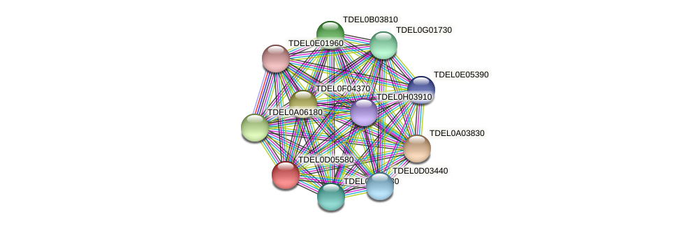 XP_003681353.1 protein (Torulaspora delbrueckii) - STRING interaction network